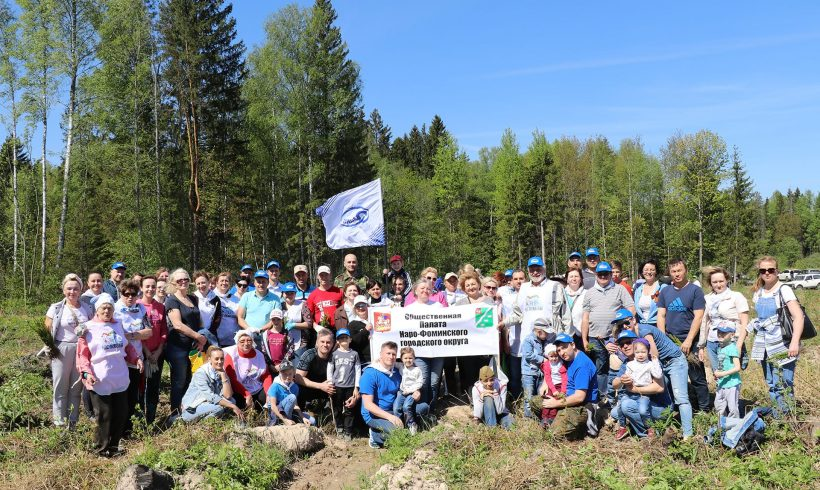 Мы вместе посадили «Лес Победы»