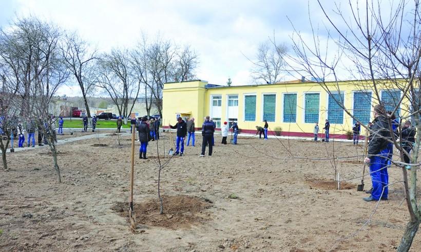 Яблоневый сад «Элинара» пополнился новыми деревьями.