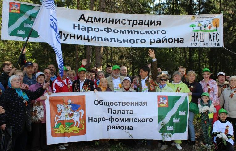 Компания «Элинар» приняла участие в губернаторской программе «Наш лес»