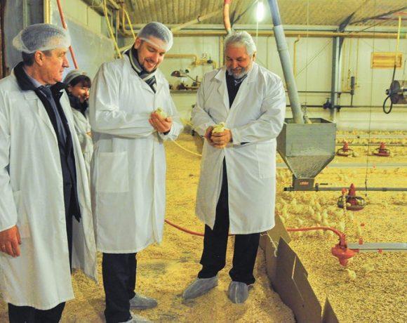 Птицефабрика «Элинар-Бройлер» встретила ио Министра сельского хозяйства Московской области