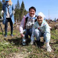 Elinar-Novosti-052017-15