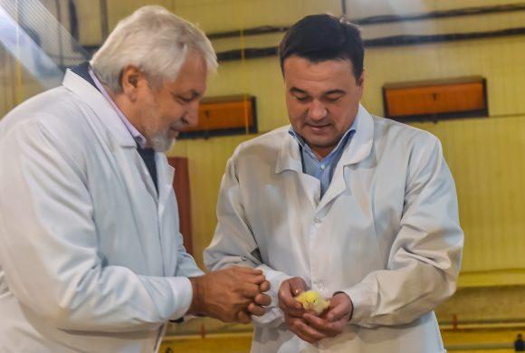 Губернатор Московской области открыл новый дом для цыплят