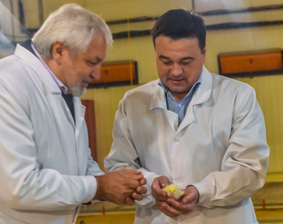 The Governor of the Moscow region opens a new house for chicken