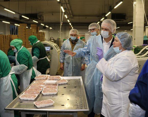 Птицеводческий комплекс «Элинар-Бройлер» стал частью реализации Национального проекта «Производительность труда»